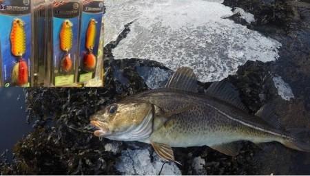 Grønbergs favoritter for sjøfiske